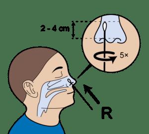 breng het wattenstaafje van de zelftest 2 tot 4 centimeter diep de neus in